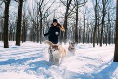 Menina que joga com os cães na neve Fotos de Stock Royalty Free