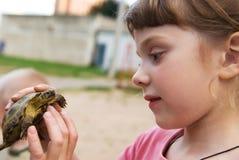 Menina que joga com tartaruga Fotografia de Stock Royalty Free