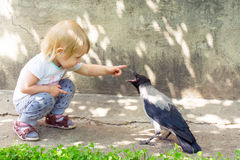Menina que joga com um corvo encapuçado Fotos de Stock Royalty Free
