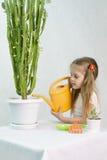 A menina derrama dos cactos de uma lata molhando Fotografia de Stock Royalty Free