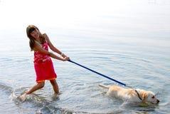 Menina que joga o cão Fotos de Stock Royalty Free