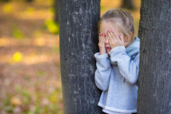 Menina que joga o esconde-esconde perto da árvore Foto de Stock