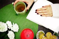 Menina que lê um livro com um copo do chá fotos de stock