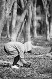 Menina que mantém a folha na floresta seca fotografia de stock