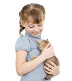 Menina que mantem o gatinho britânico isolado Imagem de Stock