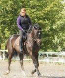 Menina que monta um cavalo Fotografia de Stock