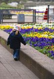 Menina que olha flores Imagens de Stock Royalty Free