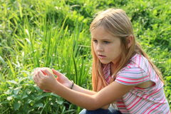 Menina que prende uma maçã Fotografia de Stock
