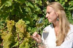 Menina que prova o vinho branco entre vinhedos Fotografia de Stock Royalty Free