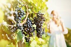 Menina que prova o vinho branco entre vinhedos Imagens de Stock Royalty Free