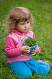Menina que recolhe a grama Fotografia de Stock