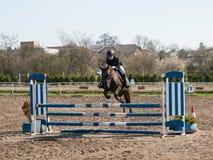 A menina que salta sobre o obstáculo azul na competição do showjumping fotografia de stock