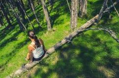 Menina que senta-se na árvore caída profundamente nas madeiras no dia de mola ensolarado Foto de Stock Royalty Free