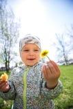 Menina que senta-se na grama e que guarda dentes-de-leão amarelos fotos de stock royalty free