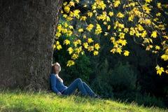 Menina que senta-se na grama sob a árvore de bordo no outono Imagem de Stock