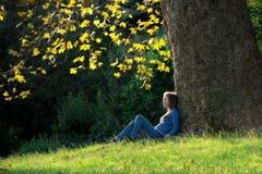 Menina que senta-se na grama sob a árvore de bordo no outono Fotografia de Stock