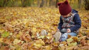 Menina que senta-se nas folhas amarelas do outono com o telefone filme