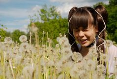 Menina que senta-se nos dentes-de-leão Imagem de Stock Royalty Free