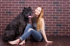 A menina que senta-se perto da parede ao lado do cão Cane Corso e ela inclinou sua cabeça Imagens de Stock Royalty Free