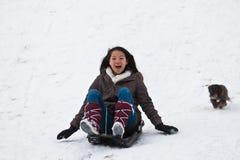 Menina que sledging com seu cão Fotografia de Stock