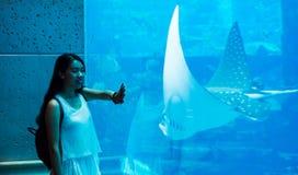 Menina que tem o divertimento em um grande aquário foto de stock