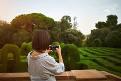 Menina que toma uma foto no parque em seu smartphone Fotografia de Stock