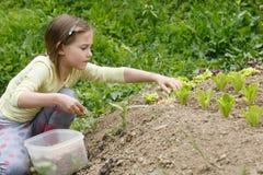 Menina que trabalha no jardim fotos de stock royalty free