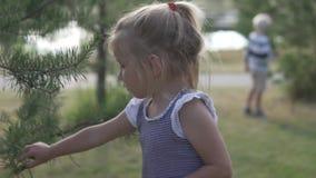 A menina rasga colisões novas da árvore de Natal video estoque