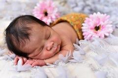 Menina recém-nascida do bebê pequeno asiático que dorme em um laço com teste padrão de flor foto de stock