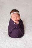 A menina recém-nascida levantada que dorme em um roxo envolve-se fotos de stock