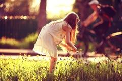A menina recolhe flores Imagem de Stock