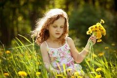 A menina recolhe um ramalhete dos dentes-de-leão Imagem de Stock