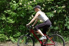 A menina relaxa biking Foto de Stock