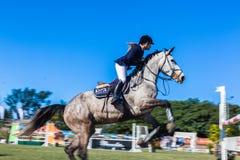 Menina Rider Standing Jump do cavalo Foto de Stock Royalty Free