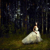 Menina romântica na floresta feericamente
