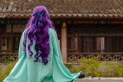 Menina roxa do cabelo Imagem de Stock Royalty Free