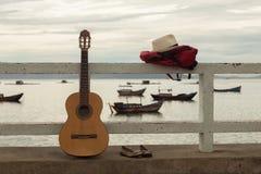 Menina ruivo bonita com uma guitarra Foto de Stock