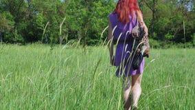 A menina ruivo em um vestido lilás, com uma trouxa e um saco de ervas medicinais anda através de um prado gramíneo filme