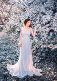 Menina ruivo em um vestido modesto, muito longo, cinzento no estilo rústico Retrato da noiva na perspectiva da foto de stock