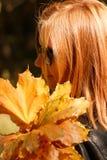 Menina ruivo nas folhas do amarelo das posses dos vidros imagem de stock royalty free