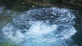 A menina salta na água filme