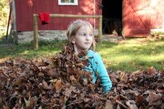 A menina senta-se acima de esconder nas folhas Imagens de Stock Royalty Free