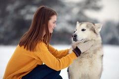 A menina senta-se ao lado de um Malamute do Alasca do cão e abraça-se o seu para uma caminhada imagem de stock