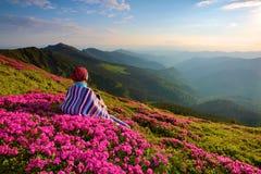 A menina senta-se no gramado coberto com as flores cor-de-rosa Foto de Stock Royalty Free