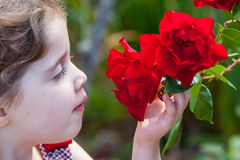 Menina Snifing uma Rosa Fotos de Stock