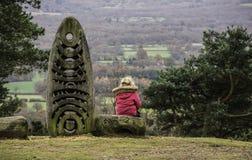 Menina sobre a vista do monte Foto de Stock