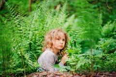 Menina sonhadora da criança que joga e que esconde em samambaias selvagens na floresta do verão Fotografia de Stock Royalty Free