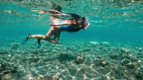 Menina subaquática que mergulha em uma água tropical clara no recife de corais Natação da jovem mulher acima do recife de corais  filme