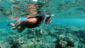Menina subaquática que mergulha em uma água tropical clara no recife de corais Natação da jovem mulher acima do recife de corais  video estoque