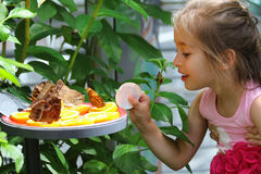 Menina surpreendida por borboletas Fotos de Stock